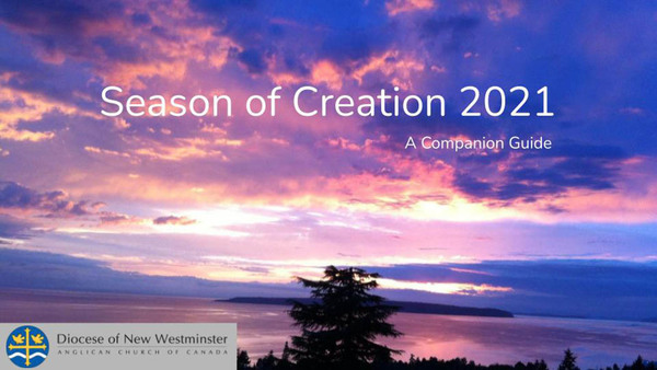 Praying, Learning, Acting in the Season of Creation
