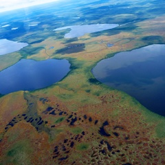 Aerial view of the landscape typical of the hudson bay lowlands ontario canada. image taken by k. ruhland