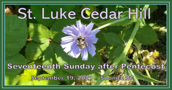Video of the 17th Sunday after Pentecost Service Is Now Available image