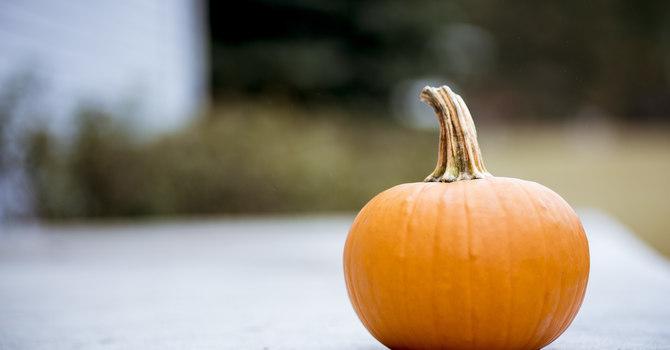 4 Nights of Halloween - Every Wednesday in October
