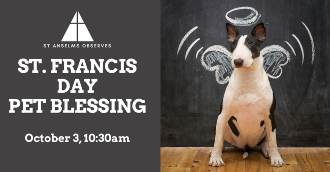 St Francis Day: Pet Blessing image