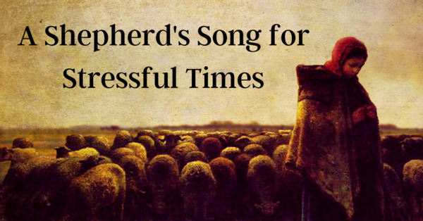 A Shepherd's Song for Stressful Times