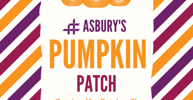 Asbury Pumpkin Patch