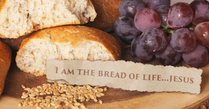 Sermon for Sunday, August 22nd
