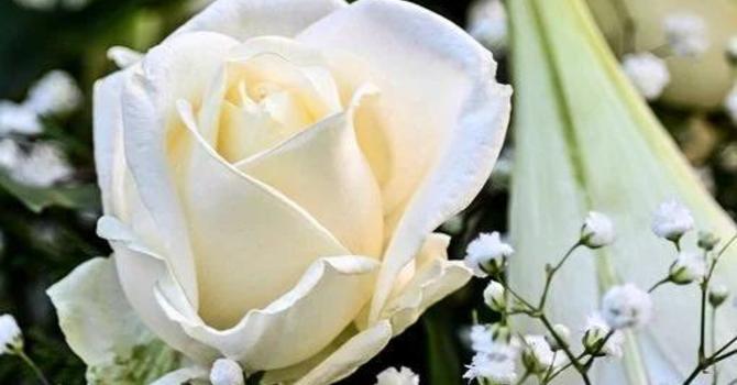 In Memoriam: Sylvia Derbyshire