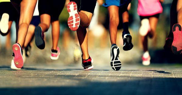 Terry Fox Run on Wednesday