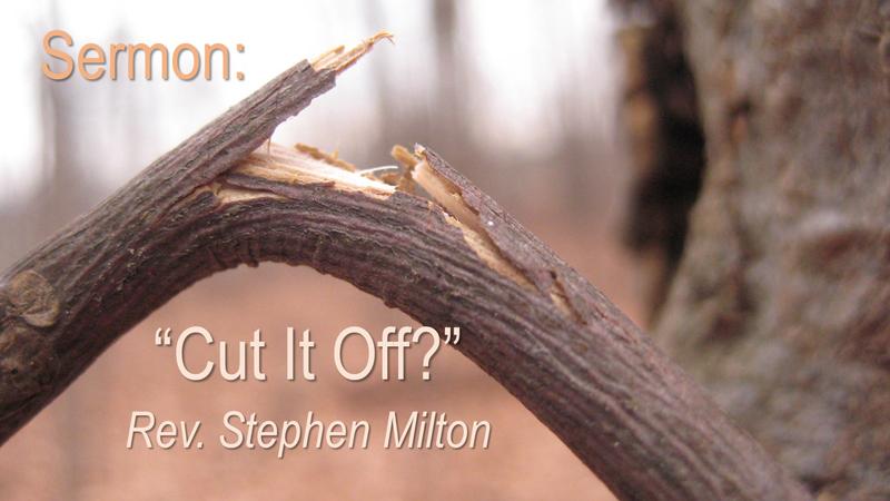 Cut it Off?