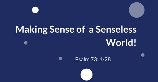 Making Sense of a Senseless World!
