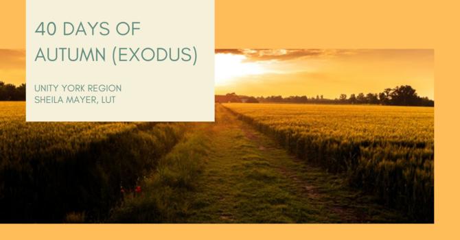 40 DAYS OF AUTUMN (EXODUS) image