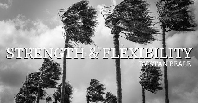 Strength & Flexibility image