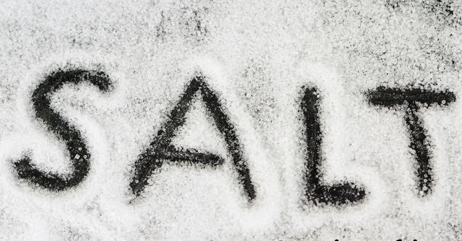 Salt (Introduction)
