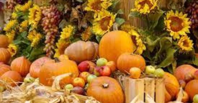 Newsletter October 2nd image