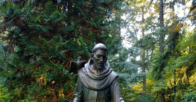 Sabbatical Notes - The Transitus of St. Francis image