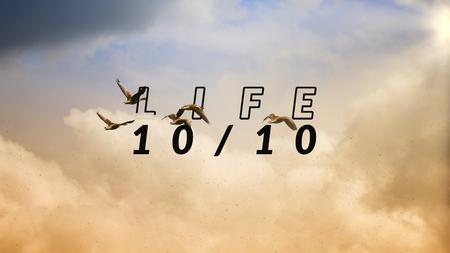 Life 10:10