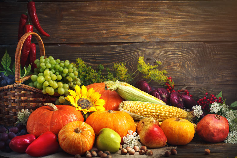 Harvest Thanksgiving Sunday