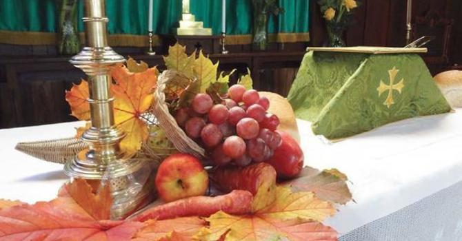 Yes, I am thankful! image