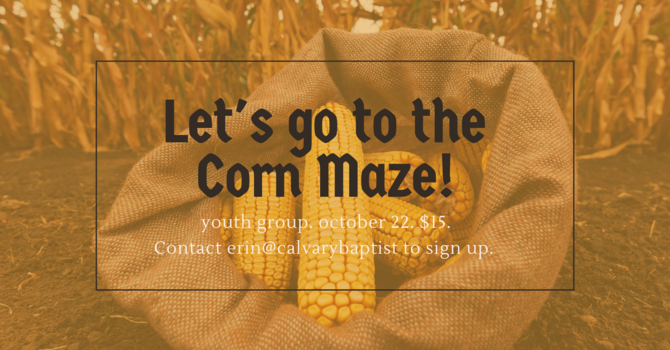 Youth at the Corn Maze!