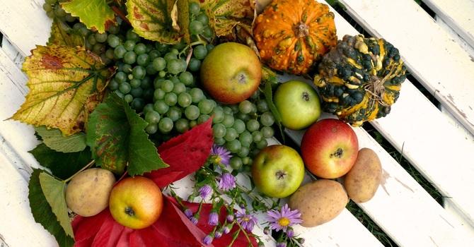 Sunday Thanksgiving Service