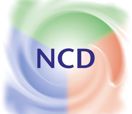 Natural Church Development report back