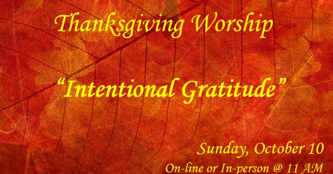 Intentional Gratitude