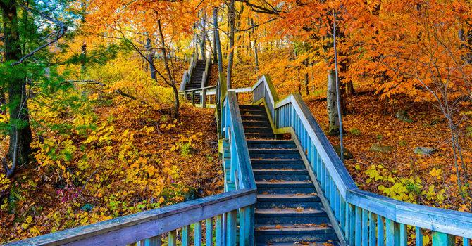 Fall Colours Hike