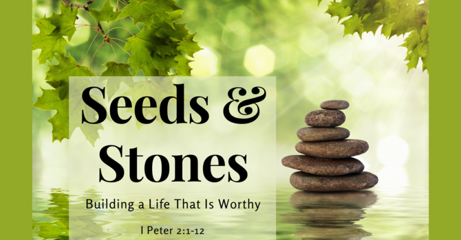 Seeds and Stones: Building a Life That Is Worthy