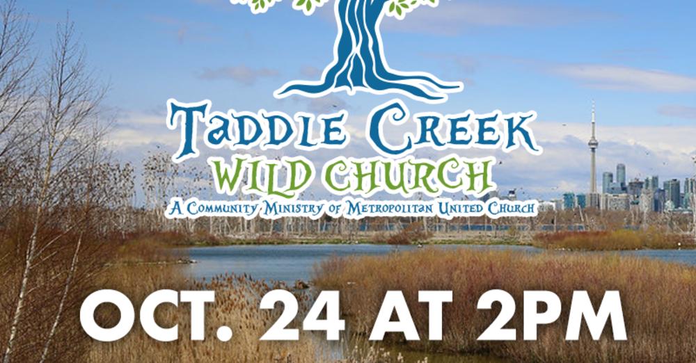 Taddle Creek Wild Church
