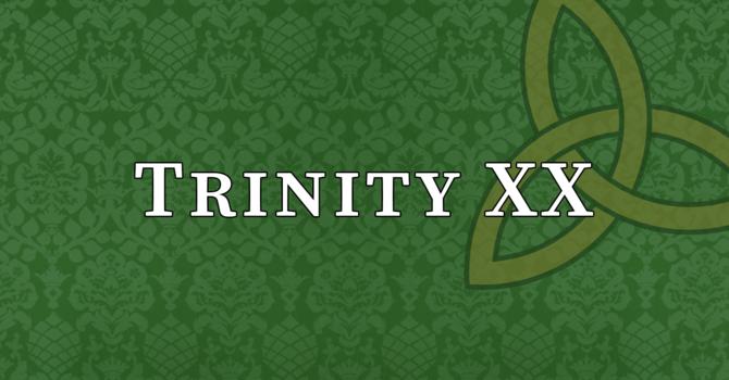 Trinity XX