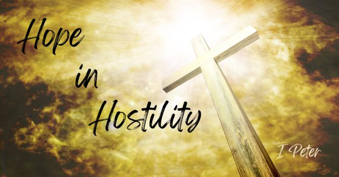 Hope in Hostility
