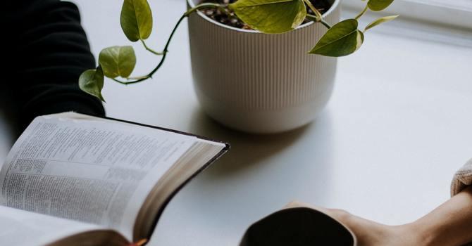 Mid week study/prayer group