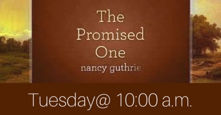 The Promised One Women's Bible Study