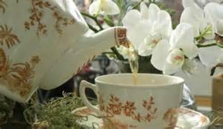 Mother's Day Tea & Plant Sale