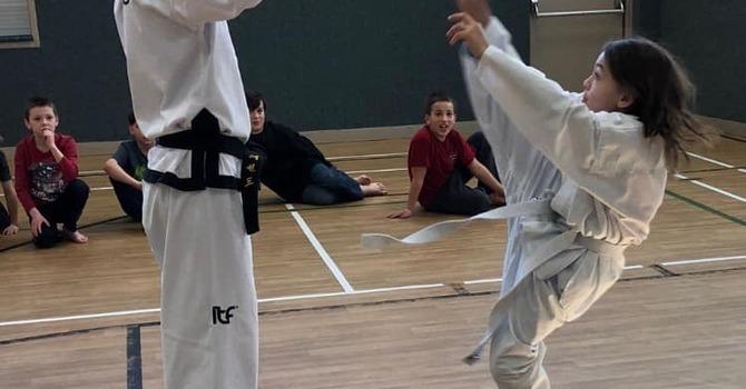 Taekwondo Lessons image