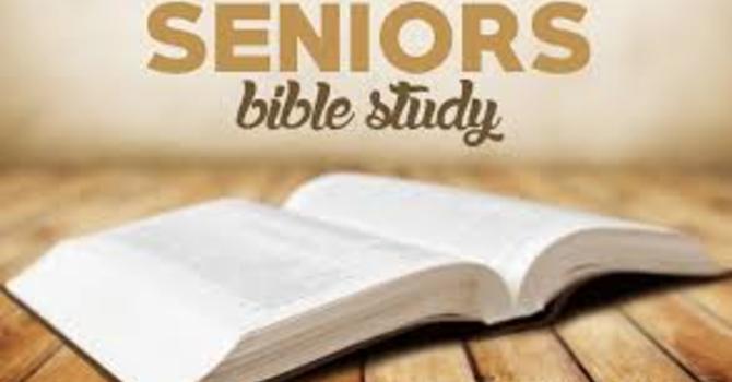 Seniors Bible Study