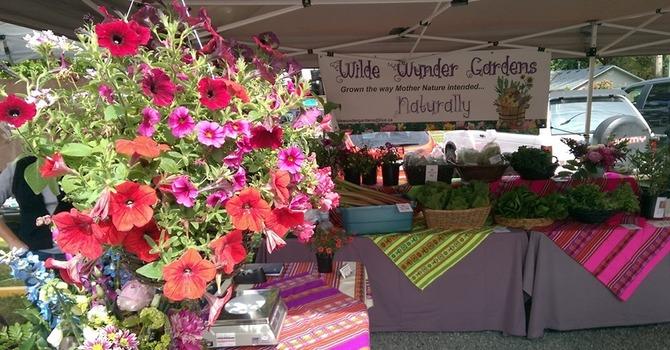 Murrayville Summer Farmers' Market