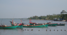 Fishing%20boats